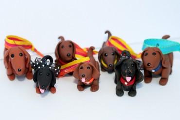 愛犬への誕生日プレゼントはこれ。ダイソンのグルーミングツール 他
