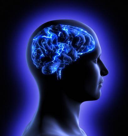 2014-12-30 18_22_52-neuron brain - Google Search